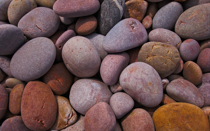 Wall Art - Pebbles - An Abstract close-up of some Pebbles at Budleigh Salterton Beach